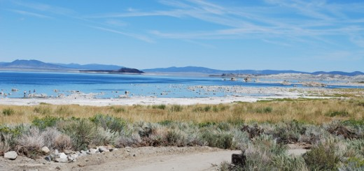 Mono Lake Committee and DWP