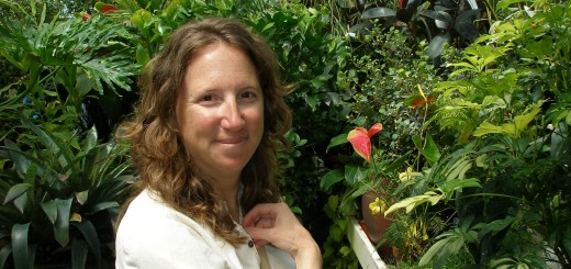 Holly Alpert, IRWMP, regional water management, California Native Plant Society