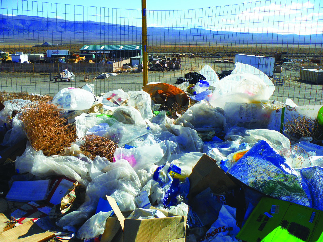 Plastic bags at the Benton Crossing Landfill. Photo courtesy: Mike Bodine.